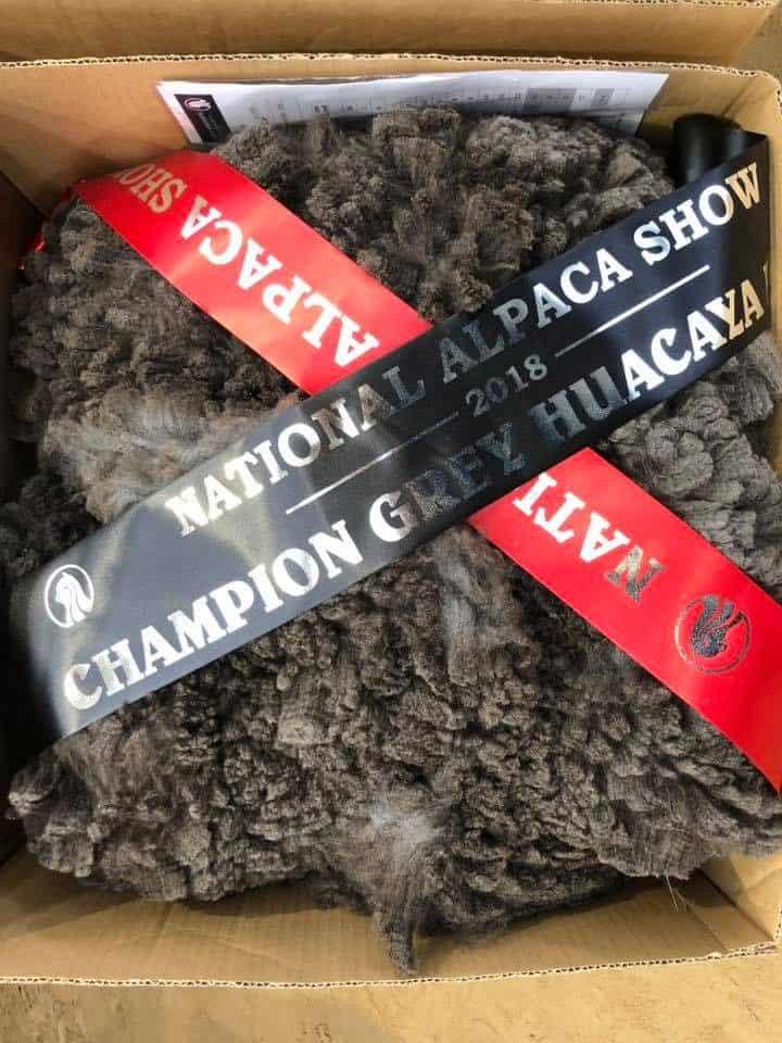 champ-grey-fleece-e1539295739142